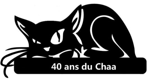Logo du pull 2013 - 2014